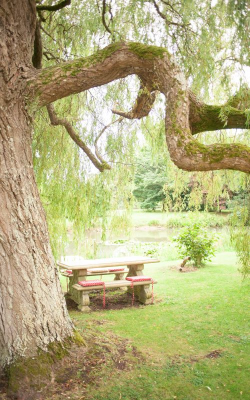 Charity Garden Party | Salwayash, Dorset